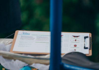 17_RuthMoschner_NABU_NANDINI_Insekten-Zählhilfe